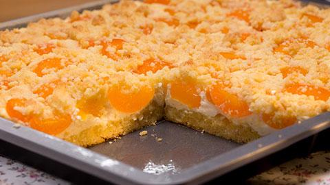 Schneller Quark Streusel Kuchen Mit Obst Rezept Essen Und Trinken